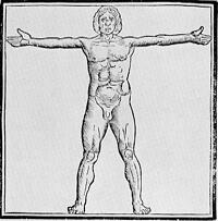 Early vitruvian man by Fra Giovanni Giocondo