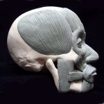 By Ian Naud, Oil-based clay and plastic