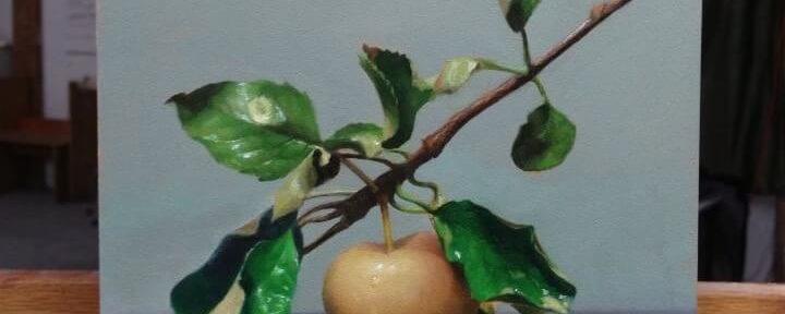 """Summer Apple"" by David Jamieson"