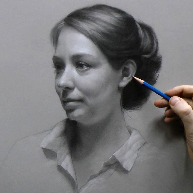 Portrait drawing the complete online course vitruvian for Sketch it online