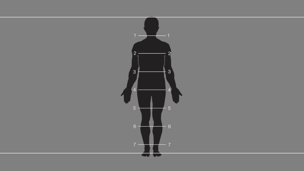 In the 7.5 head figure canon, the distance between the top of the head and the chin fits approximately 7.5 times between the top of the head and the floor on a standing figure.