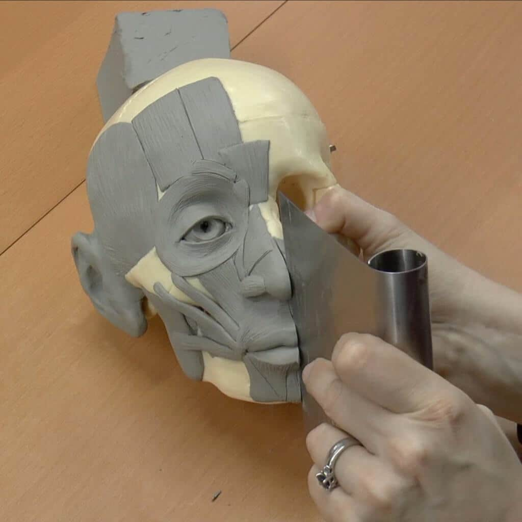 Use a knife blade to bisect the nose and mouth down the midline.